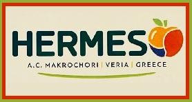 A.C. MACROCHORI HERMES EXPORT